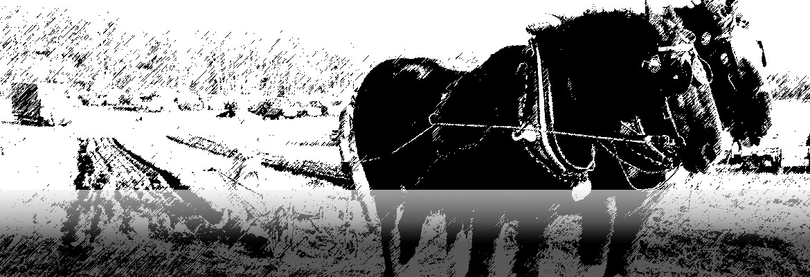 History of competitive ploughing